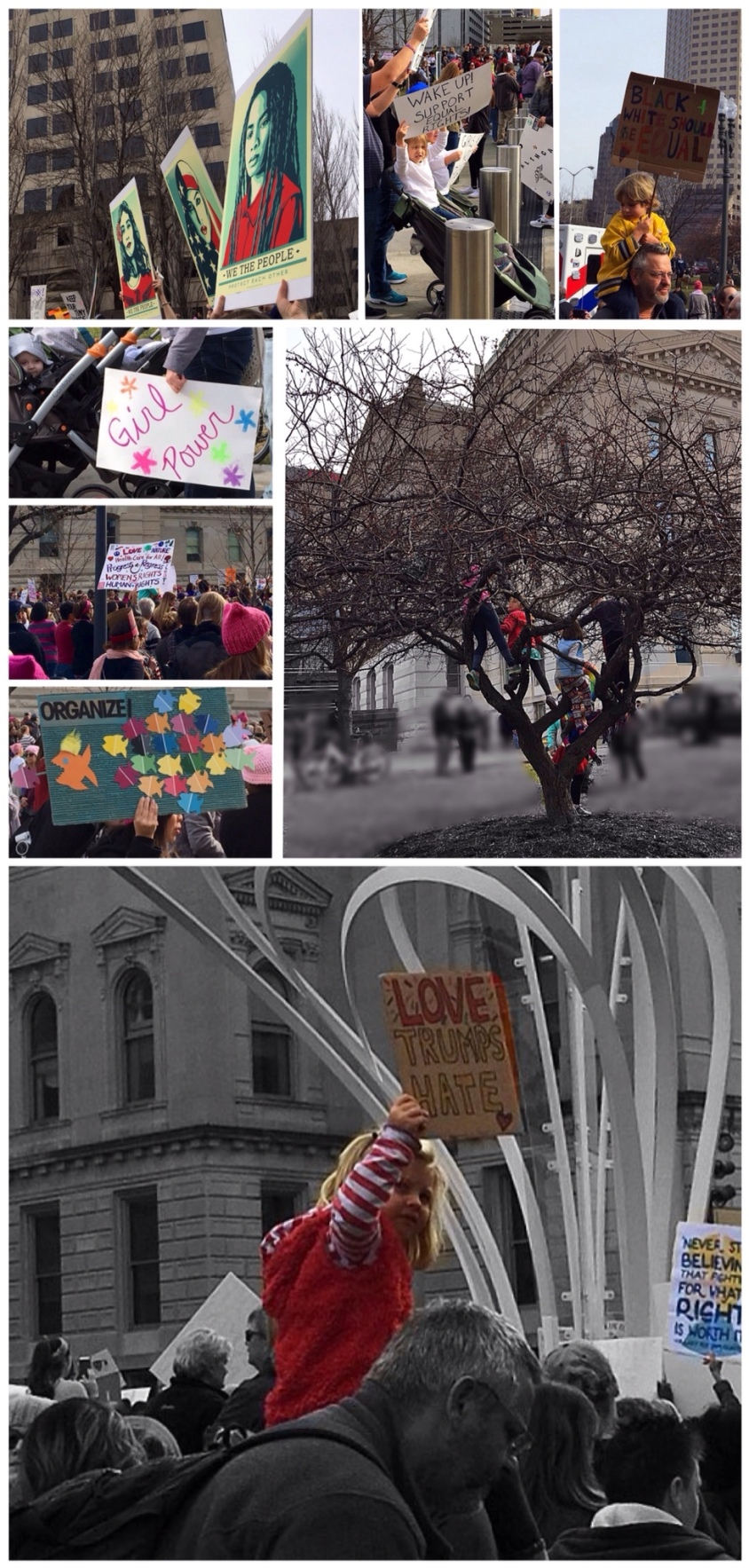Indianapolis Women's March 01/21/2017