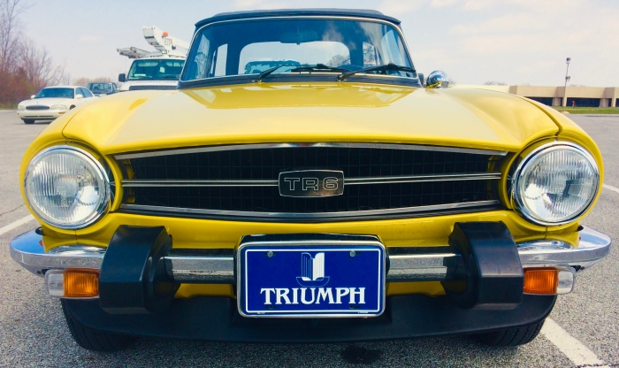 Yellow Triumph